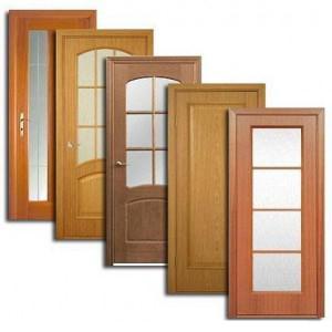 Двери, дверные блоки Шатуры